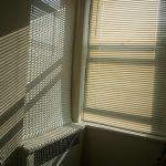sunlight-668257_960_720-1